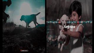 Dog Love Whatsapp Status😍Cute Dog 😘Dog Lovers || Terror Guyz