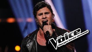 Sebastian James Hekneby - Sign Of The Times | The Voice Norge 2017 | Live show
