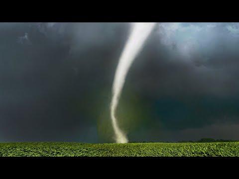 IOWA TORNADO SHREDS CORN - 7/14/21