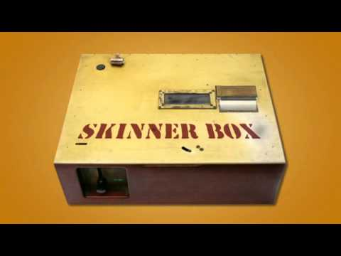 the psy skinner box Check out skinnerbox on beatport  skinnerbox followfollowingunfollow  featured tracks releases charts latest releases music for sad & rainy  open.