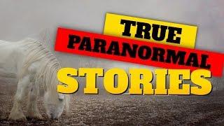 True Paranormal Investigator Stories