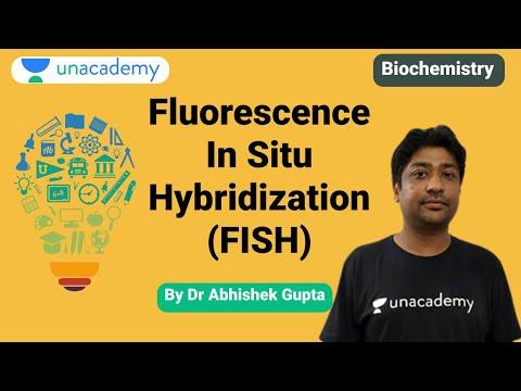 NEET PG   Biochemistry   Fluorescence In Situ Hybridization (FISH) By Dr. Abhishek Kumar