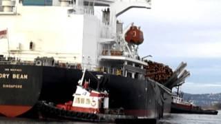 Damaged MV Dry Beam Cargo Ship