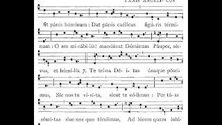 Panis Angelicus, Hymn