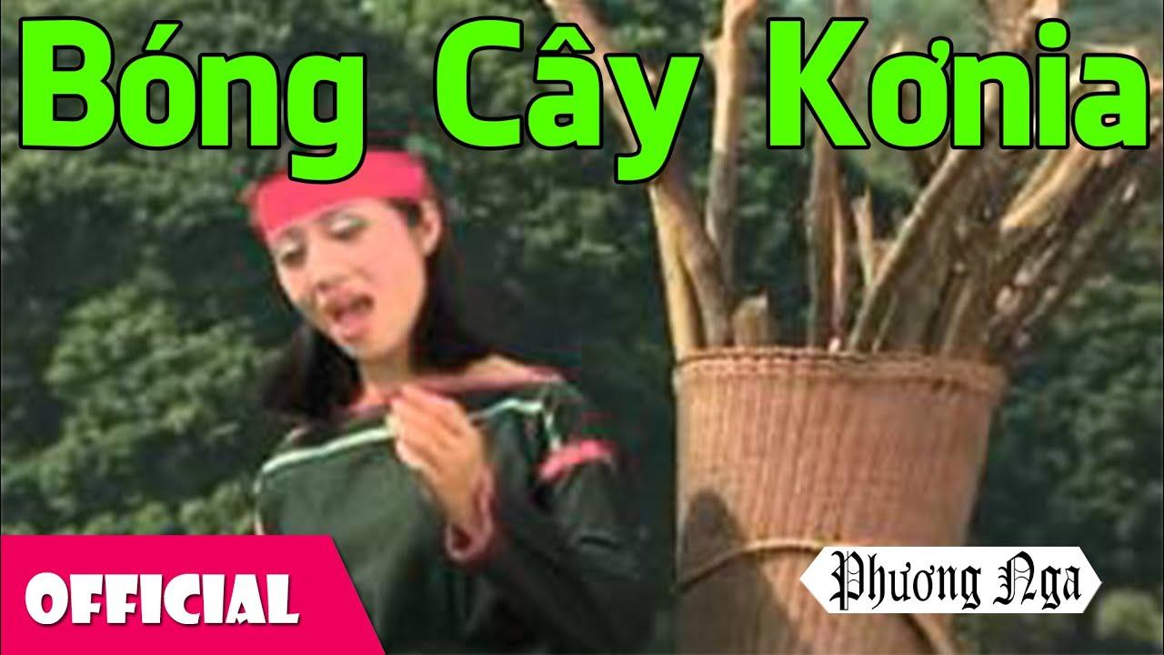 Bóng Cây Kơ Nia – Phương Nga [Official MV]