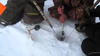 Ловля судака зимой.