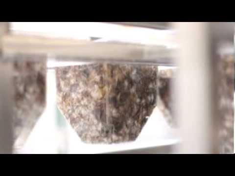 Ecovative's Mushroom Materials