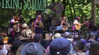 Download Shook Twins  07/13/2017 @ Northwest String Summit MP3 song and Music Video