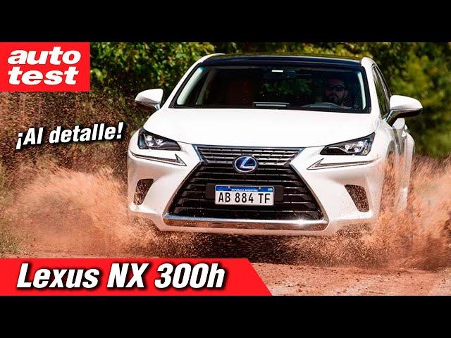Prueba: Lexus NX 300h
