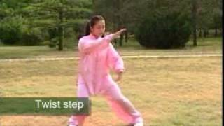 Tai Chi 10 Form, with English Titles