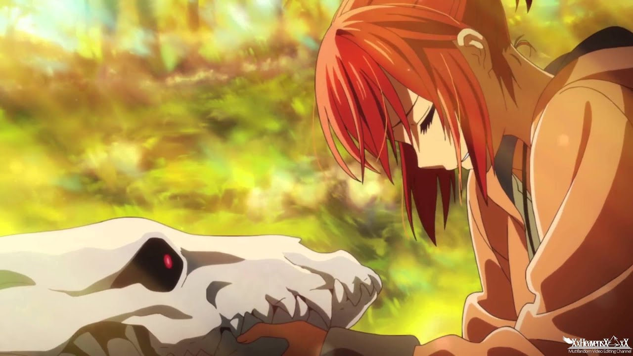 humanthe ancient magus bride pvamv youtube