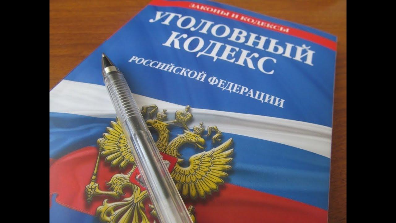 уголовный кодекс россии скачать - фото 4