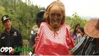 前五名還存在的恐怖傳統習俗 Top 5 Scary Traditions That Still Exist