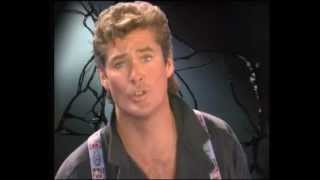 Смотреть клип David Hasselhoff - Song Of The Night