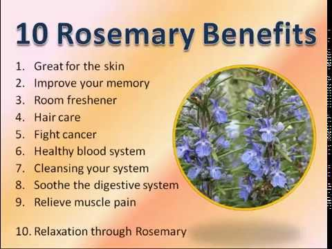 10 Rosemary Benefits