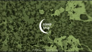 Atmøsphäre - Deep Forest Temple [ambient techno / dub techno]