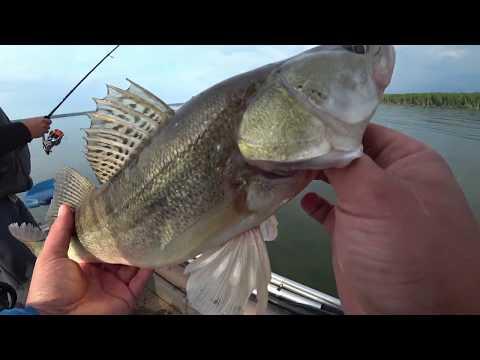 Рыбалка со спиннингом. Открытие рыболовного сезона на Яузском водохранилище.  Ловим судака на джиг.