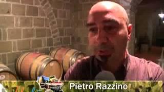 Una nuova azienda vitivinicola nel casertano: è nato Podere Bell