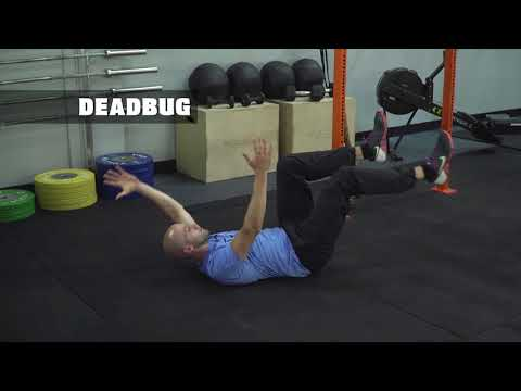 Workout 4: Core Circuit - Targeted core workout with scaling options