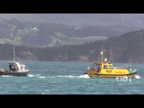 Water rescue in Otago harbour