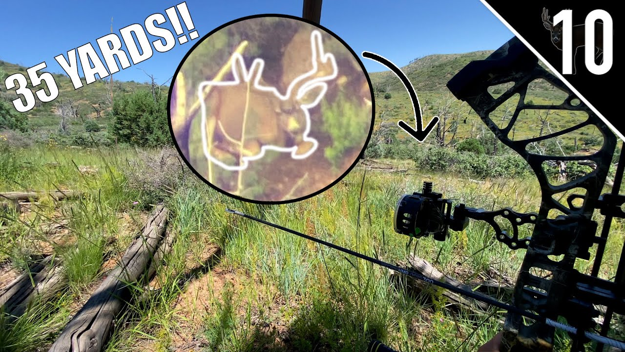 THE FINAL STALK! - Hunting a New Mexico Muley on Public Land