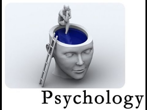 Online Psychology Degree  Bachelor's in Psychology Online