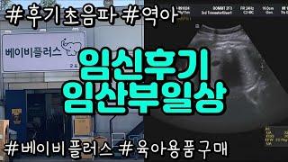 후기임산부 일상/유모차 카시트구매/베이비플러스