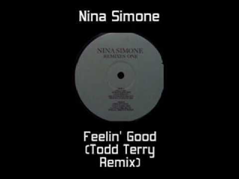 Nina Simone - Feelin' Good (Todd Terry Remix)