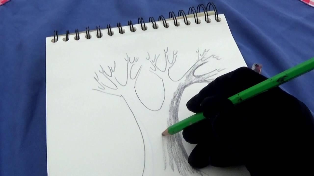 Comment dessiner un arbre hyper facile avec paloma youtube - Arbre dessiner ...