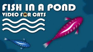 CAT GAMES - Catching Fish in a Pond! Fish Video for Cats.