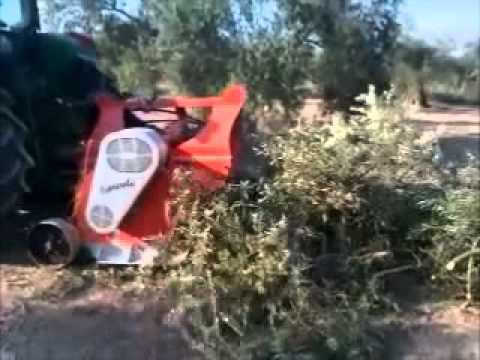 Demostraci n trituradora de ramas cavasola youtube - Trituradora de ramas casera ...