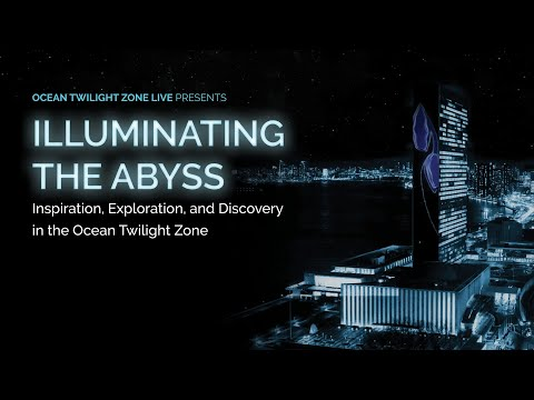 Illuminating the Abyss: Inspiration, Exploration, and Discovery in the Ocean Twilight Zone