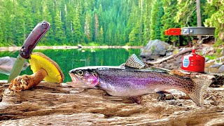 WILD Mountain Trout Fisнing & Mushroom Foraging! 72H SOLO Catch, Cook, Camp!!!