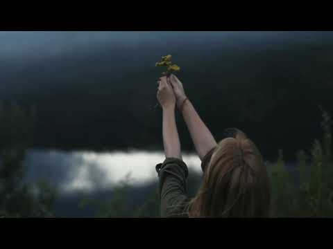 Stive Morgan - Solar Wind Part 3