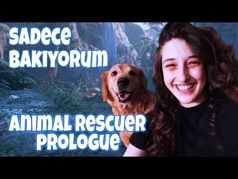 SADECE BAKIYORUM | Animal Rescuer