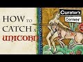 How to catch a unicorn | Curator's Corner Season 2 Episode 7