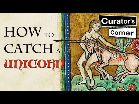 How to catch a unicorn | Curator