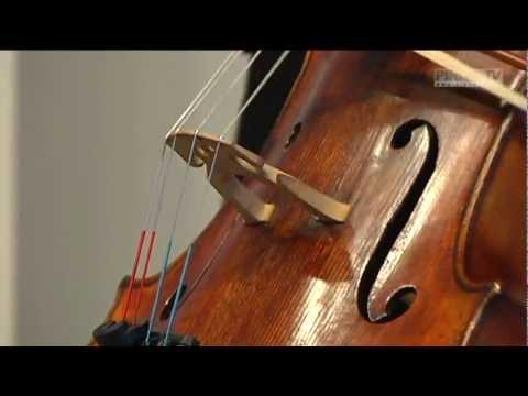 Konzertpremiere in Graupa mit Jan Vogler