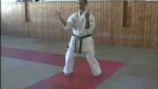 Shisochin by Nippon Training