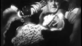 Trader Horn (1931)