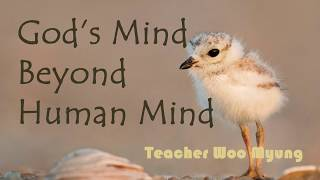 'God's Mind Beyond Human Mind' from Stop Living In This Land Go To The Everlasting World Of Happin..