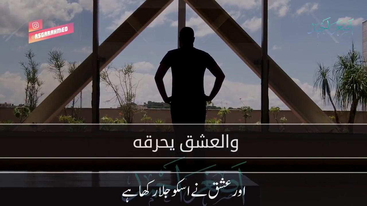 Download Arabic Whatsapp Status Download 3gp  mp4  mp3  flv