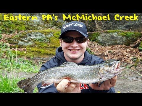 Trout Fishing Pennsylvania's McMichael Creek