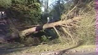 St georges de Didonne, ouragan sur la ville en 1999
