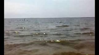 Пляж в Таганроге(Отдых на Азовском море в Таганроге., 2009-01-24T17:12:22.000Z)