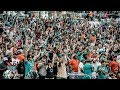 #Dolphins 31 - #Bears 28 | Game Day Vlog w/fan interviews #FinsUp