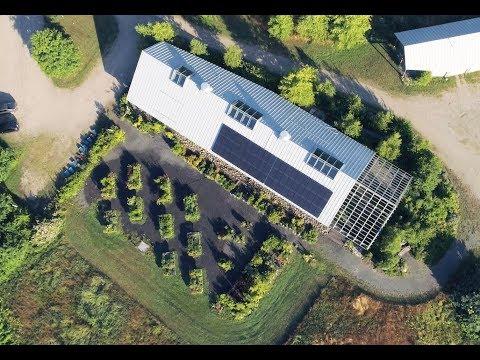 Wildflowers and Solar Power at Nasami Farm