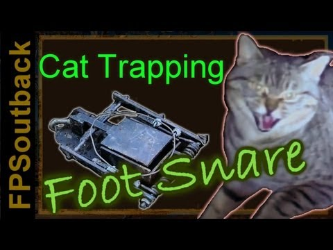 Feral Cat Trapping with the Foot Snare