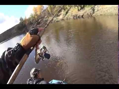 рыбалка в омской области на реке туй омская область