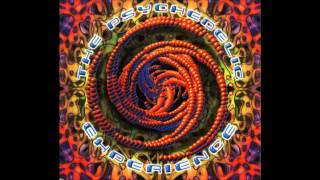 The Psychedelic Experience 1 [FULL ALBUM]